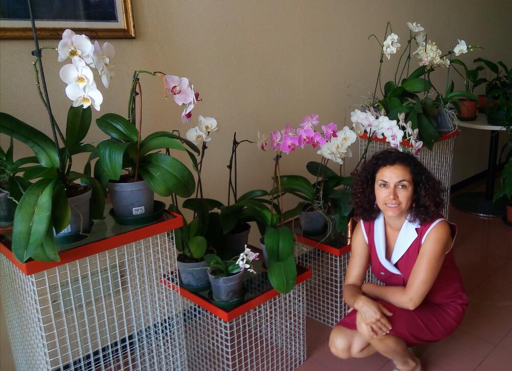 Orchidee (i risultati delle cure)