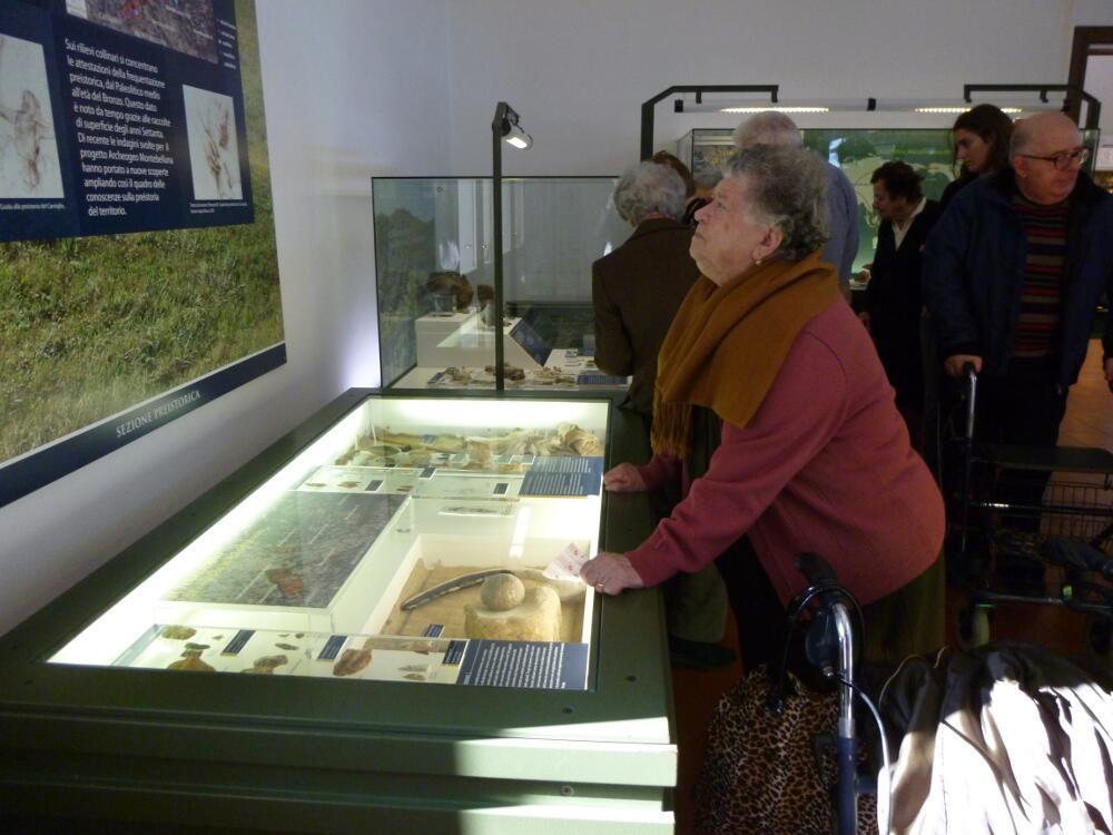 Museo archeologico di Montebelluna